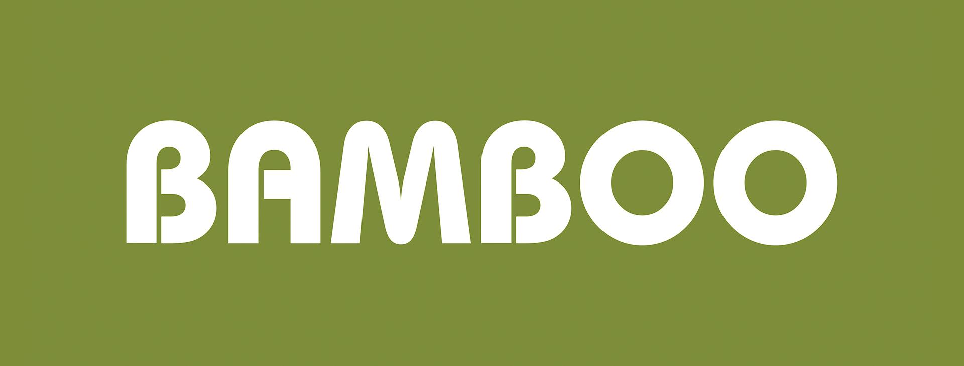 bamboo_lente_NO_20201102
